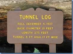2600 Tunnel Log Sequoia National Park CA