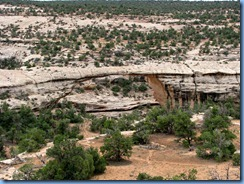 5557 Owachomo Bridge Natural Bridges National Monument UT