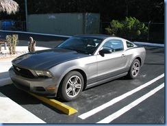 6918 Rental car Mustang