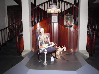 Even Skeletons enjoy relaxing in a rocking chair while reading a good book