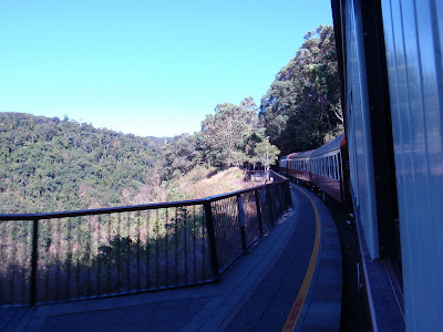 Viewing the rainforest from our car aboard the Kuranda Scenic Railway