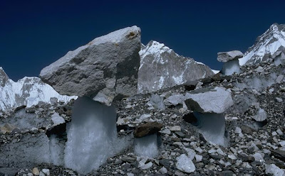 Everest - Glacier Mushrooms