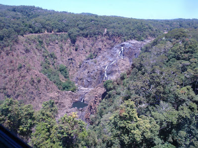 The rainforest with the Barron Falls coming into view