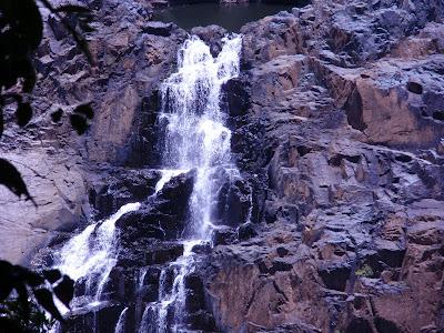 The beautiful Barron Falls