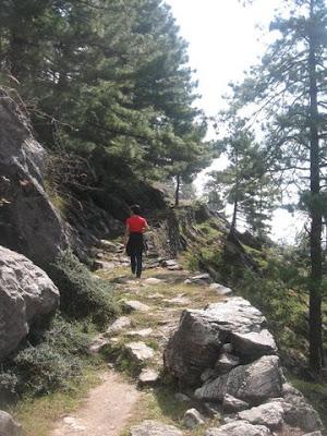 Shali trail