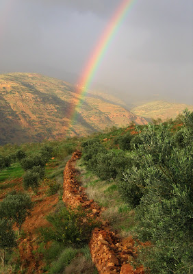rainbow over the countryside on the path in northern Jordan, near an area called Ajloun