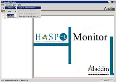 Aladdin monitor: starting the HL-Server