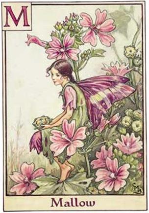 46_Mallow_Fairy_247x350[1]