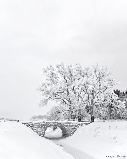 Vinterlandskap med Läbybron