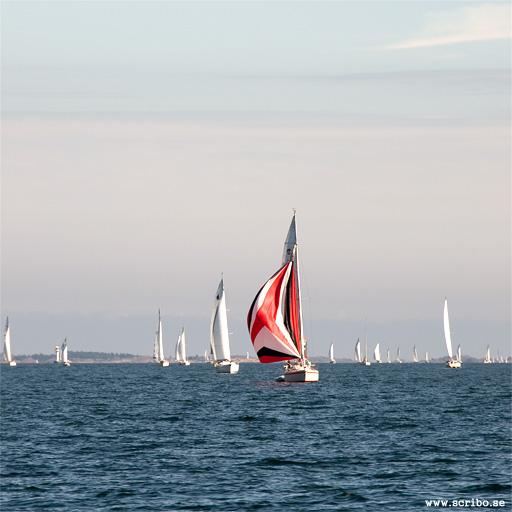 Segelbåtar på Yttre Hållsfjärden