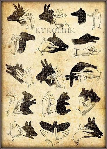Как сделать из рук животны