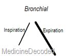 bronchial sound