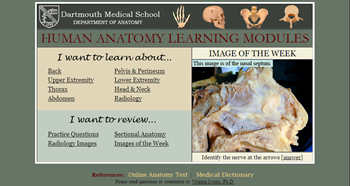 human anatomy learning