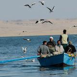 Le Lac Qarun, Egypte
