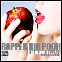 Rapper Big Pooh - Delightful Bars (Artwork All Versions)4