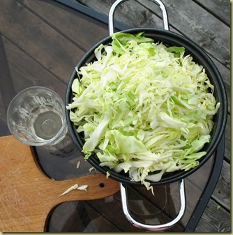 Sauerkraut or just new Cabbage