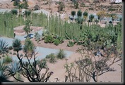 Oaxaca - botanisk hage