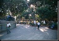 Oaxaca - frodig Zocalo