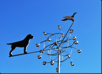 Lago Vista Dec 9 2010 - Weathervane at Kennel