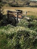 Lonely cart at Campamento Seron