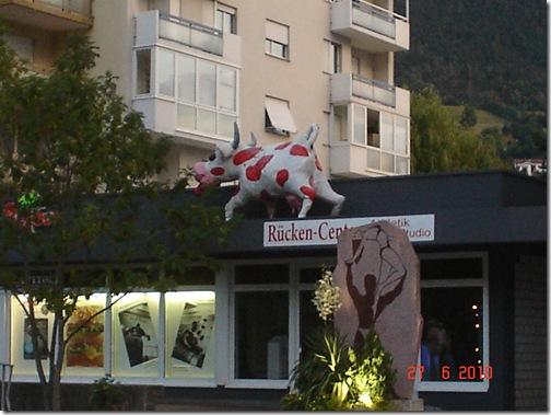 Svizzera Giugno 2010 parte seconda 022
