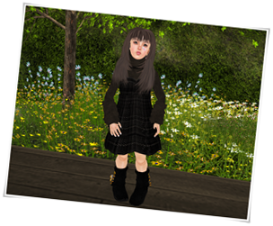 Winter Plaid dress