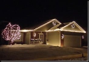 Noah Christmas Lights 048