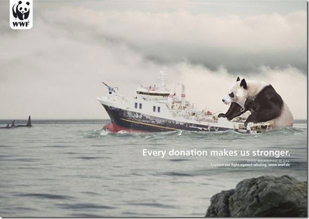 WWF advertisement