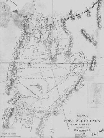 Port Nicholson chart