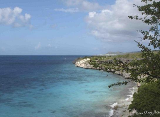 6- Bonaire copy