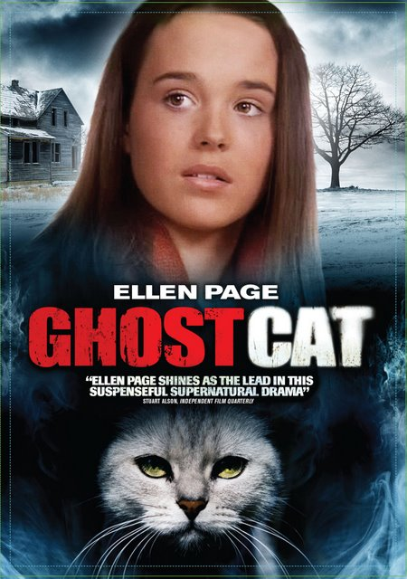 film intuition review database dvd review ghost cat 2003