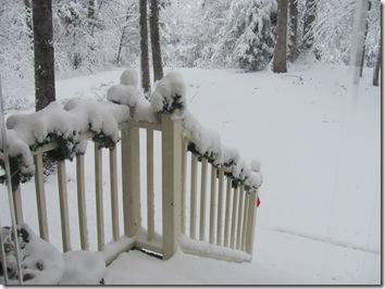 December 2010 368