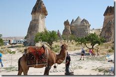 Turkia 2009 - Capadocia - 691
