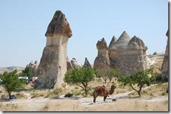 Turkia 2009 - Capadocia - 664