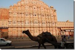 India 2010 -  Jaipur - Palacio de los vientos , 16 de septiembre   04