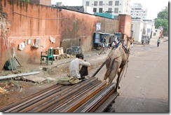 India 2010 -   Jaipur  , 15 de septiembre   30
