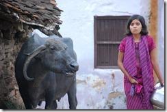 India 2010 -Kahjuraho  , 19 de septiembre   48