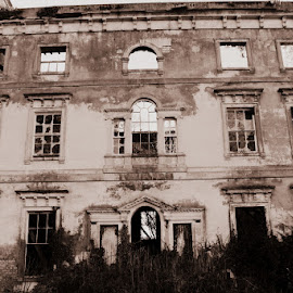 Mountpanter estate by Christina Marr - Buildings & Architecture Public & Historical ( building, royal )