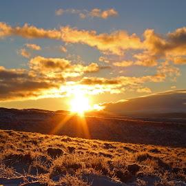 Winter Range by Kirby Hornbeck - Landscapes Sunsets & Sunrises ( sagebrush, clouds, sky, sunrises, sunsets, sun )