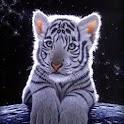 3D baby Tiger icon