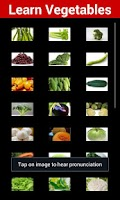 Screenshot of Learn Vegetables