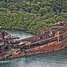 Stranded by Kelley Brower - Transportation Boats ( stranded, old, ship, rusty, travel, rust, central america, hunduras )