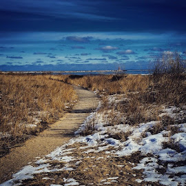 Lighthouse on a beautiful winters day by Jessica Eirich - Landscapes Prairies, Meadows & Fields