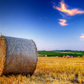 After Harvest ! by Marcel Socaciu - Landscapes Prairies, Meadows & Fields