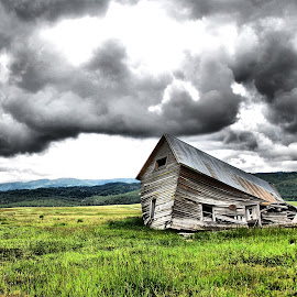The Fallen  by JOSH WOLFE - Buildings & Architecture Decaying & Abandoned ( field, broken, sky, wood, meadow, mean, house, rain )