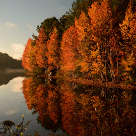 Reflected fall by Gene Myers - Landscapes Waterscapes ( shotsbygene, water, bench, autumn, fall, trees, reflections, lake, forest, leaves, gene myers )