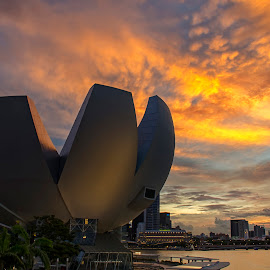 ArtScience Museum by Kristianus Setyawan - Buildings & Architecture Public & Historical ( skyline, building, sunset photography, marina bay sands, artscience museum, museum, cityscape, landscape, marina bay, singapore, burning sky, sunset, burning sunset, skyporn, landscape photography, city skyline, skyscape, golden hour )