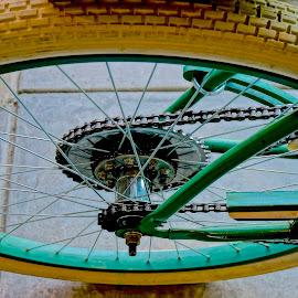 Harley-Davidson Bike by Barbara Brock - Transportation Bicycles ( white bike tire, antique bicycle, old bike, harley-davidson bicycle, bike wheel )