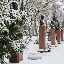 Avenue of heroes by Borovskoy Alexey - City,  Street & Park  City Parks (  )