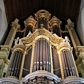Church organ 1 by Anita Berghoef - Buildings & Architecture Places of Worship ( interior, church, house of worship, organ, place of worship, architecture, looking up, church organ )